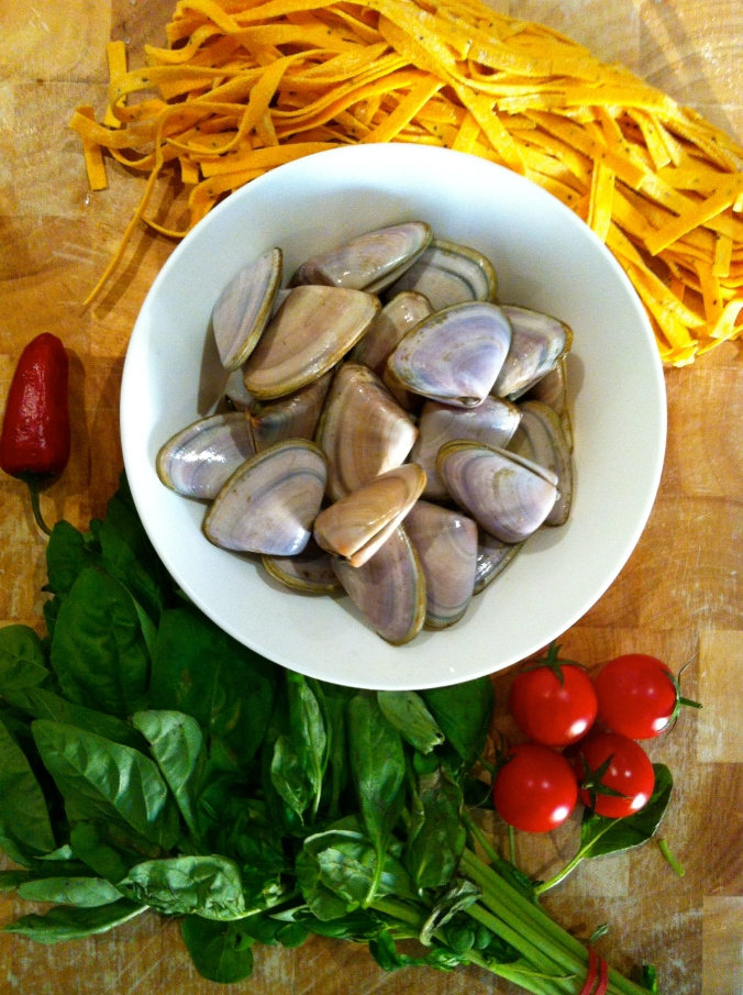 Pippies, pasta, basil, tomatoes and chilli