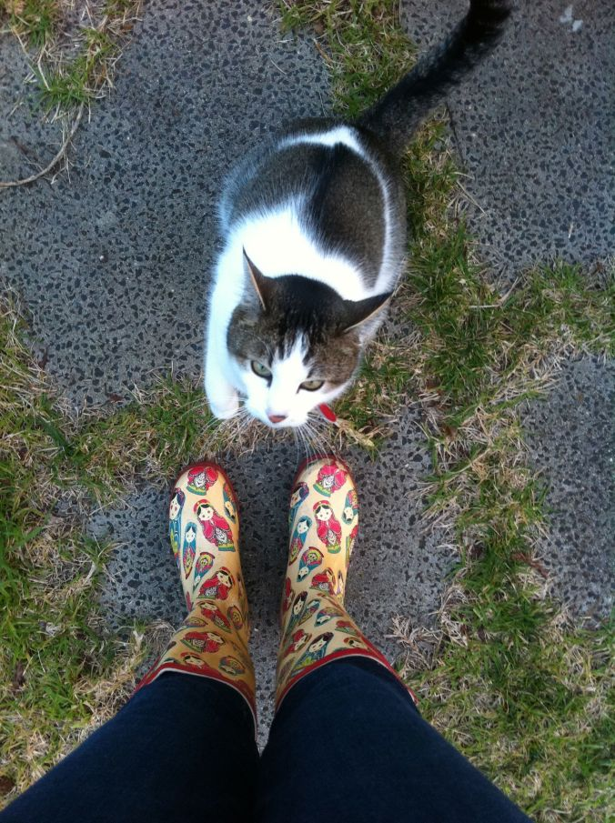 My cat and my gumboots